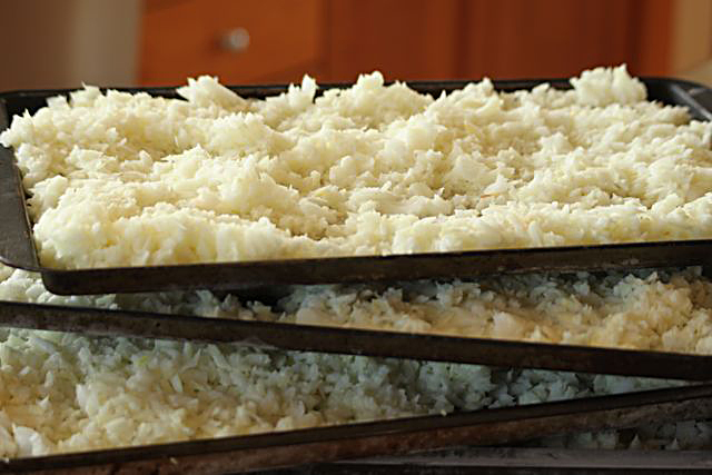 Chopped and Frozen Onions Ready for Freezer Bags.