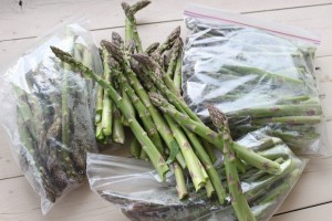Asparagus, Week Four