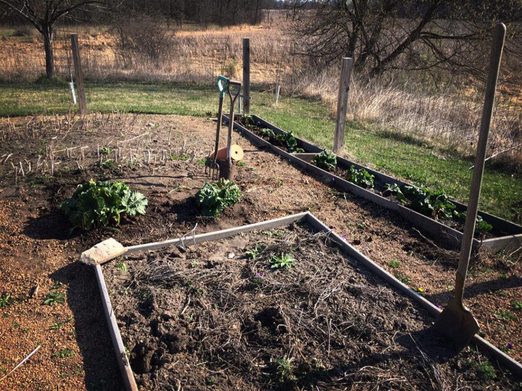 Spring Garden Chores