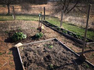 Spring Gardening is Endless