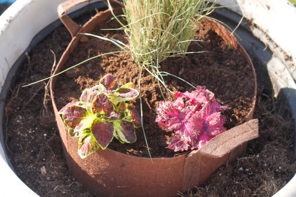 root bag in gigantic pot